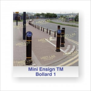 HSD LTD: MINI ENSIGN